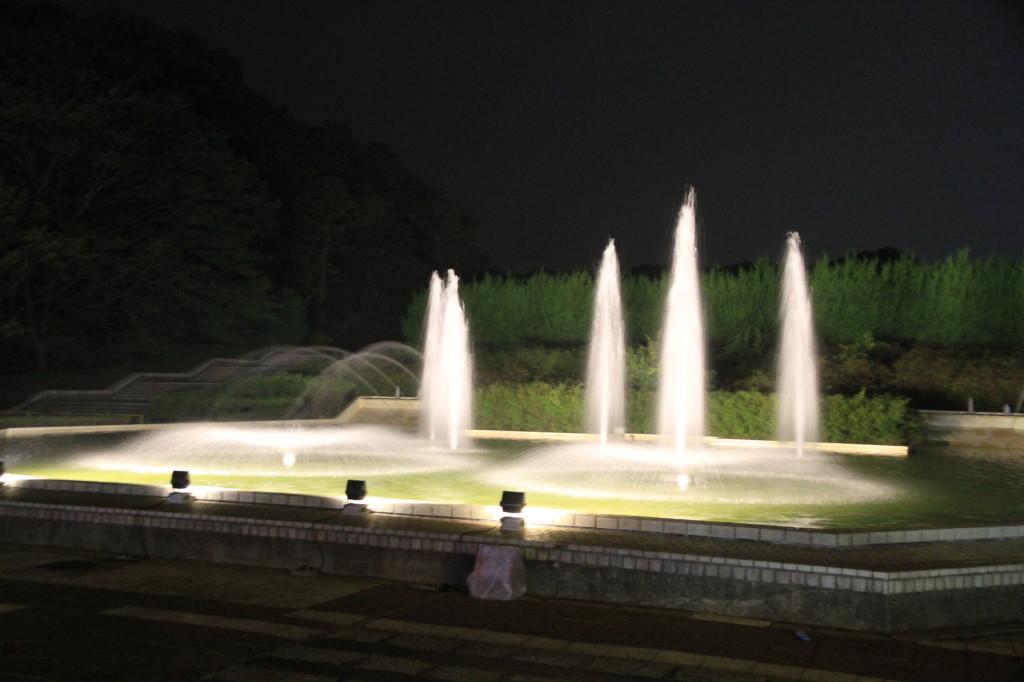 sinrinkouen-2013momoji0009