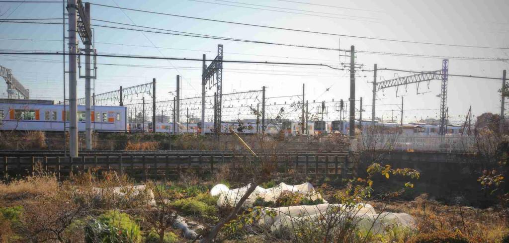 【ニュース:滑川・森林公園】東上本線で8000系が運行終了。引退ツアーも大人気。