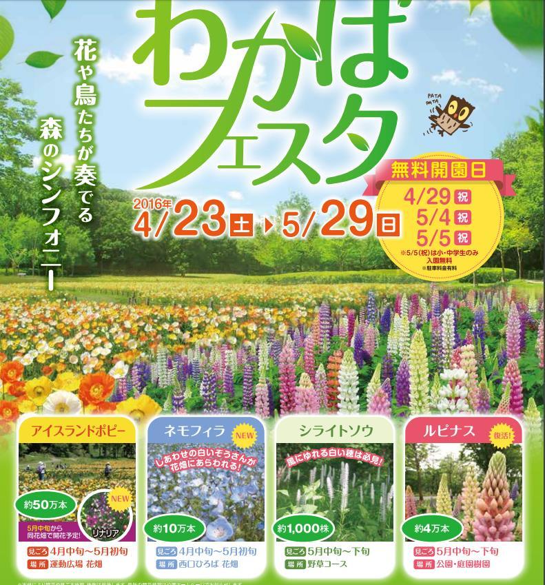 【イベント森林公園】2016年GWの無料開園日は4月29日と5月4日。